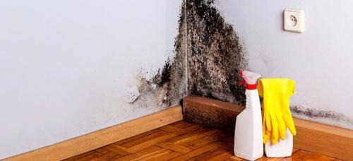 Микроклимат в доме из газобетона. Как убрать сырость в доме из газобетона?