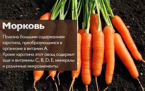 Морковь калорийность. Морковь