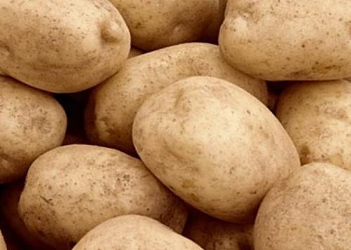 Картофель тулеевский описание сорта. Картофель сорта Тулеевский: плюсы и минусы, урожайность