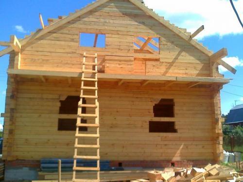 Дома строительство самому. Тонкости выбора материалов